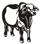 Cow v12 Decal Sticker