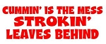 Cummin Is The Mess Strokin Leaves Behind Decal Sticker