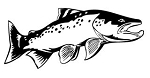 Salmon v1 Decal Sticker