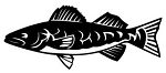 Trout v1 Decal Sticker