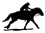 Cowgirl on Horse Silhoutte Decal Sticker
