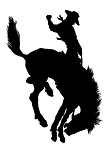 Saddle Bronc Silhouette v4 Decal Sticker