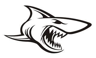 Shark v12 Decal Sticker