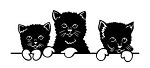 3 Kittens Decal Sticker