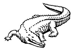 Alligator v1 Decal Sticker