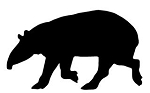Ant Eater Silhouette Decal Sticker