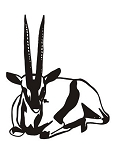 Antelope v2 Decal Sticker