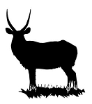 Antelope Silhouette v2  Decal Sticker