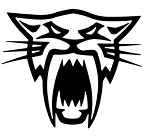 Arctic Cat v3 Decal Sticker