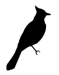 Bird Silhouette v1 Decal Sticker
