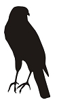 Bird Silhouette v14 Decal Sticker