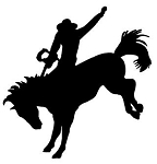 Bronco Silhouette Decal Sticker
