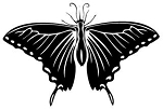 Butterfly v4 Decal Sticker