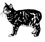 Cat v16 Decal Sticker