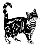 Cat v7 Decal Sticker