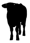 Cow Silhouette v5 Decal Sticker