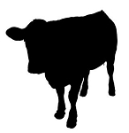 Cow Silhouette v8 Decal Sticker