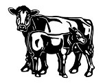 Cow and Calf Decal Sticker