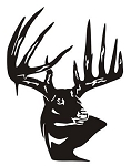Deer Head v14 Decal Sticker