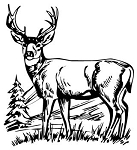 Deer Scene Decal Sticker