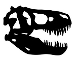 Dinosaur Skull v1 Decal Sticker