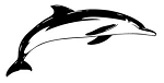 Dolphin v5 Decal Sticker