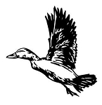 Duck - Waterfowl Hunting Decals Stickers