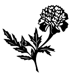 Flower v6 Decal Sticker