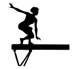 Gymnastics Decals Stickers