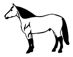 Horse v4 Decal Sticker