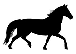 Horse Silhouette v18 Decal Sticker