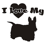 I Love My Scottish Terrier Decal Sticker