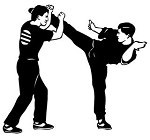 Karate Decals Stickers