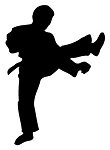 Karate Silhouette v4 Decal Sticker