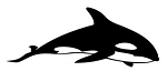 Killer Whale v1 Decal Sticker