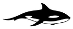 Killer Whale v2 Decal Sticker