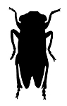 Locust Decal Sticker