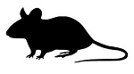 Mouse Silhouette v2 Decal Sticker