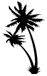 Palm Trees v1 Decal Sticker