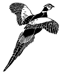 Pheasant v1 Decal Sticker