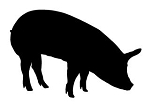 Pig Silhouette v3 Decal Sticker
