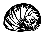 Sea Shell v1 Decal Sticker