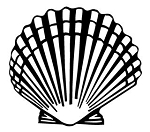 Sea Shell v2 Decal Sticker