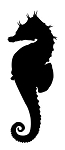 Seahorse Silhouette v2 Decal Sticker