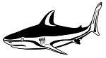 Shark v1 Decal Sticker