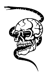 Skull with Snake Decal Sticker