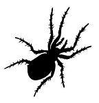 Spider v7 Decal Sticker