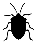 Stink Bug Decal Sticker