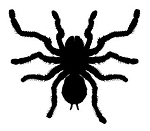 Tarantula v2 Decal Sticker