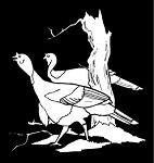Turkeys Decal Sticker
